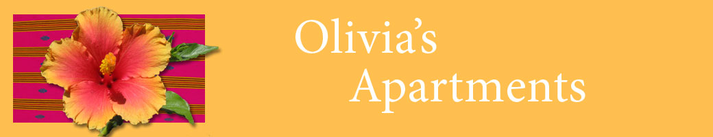 Olivia's Apartments Banner